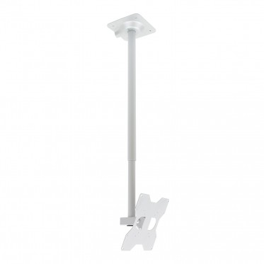 tilting and swivelling ceiling mount